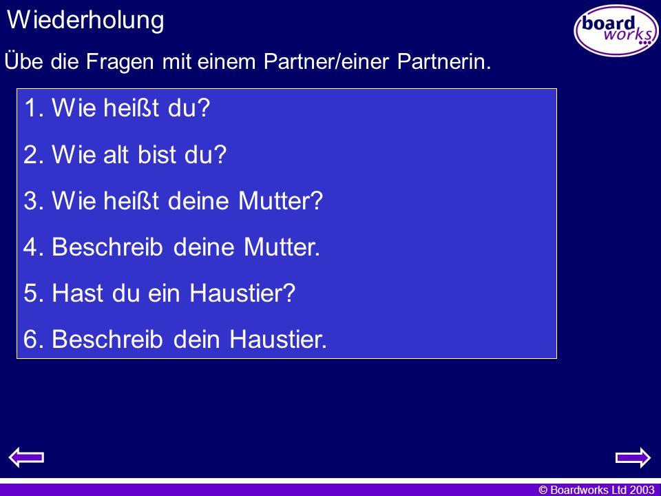 Übe die Fragen mit einem Partner/einer Partnerin.