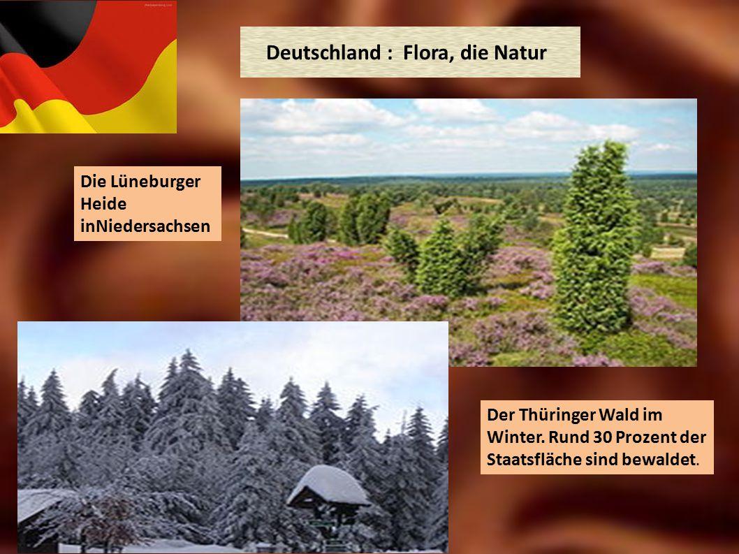 Deutschland : Flora, die Natur