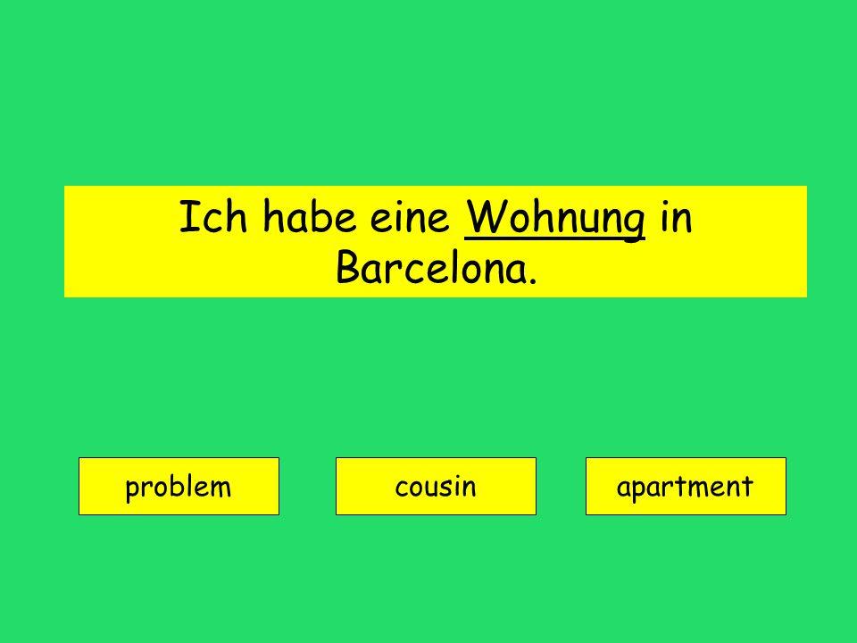 Ich habe eine Wohnung in Barcelona.