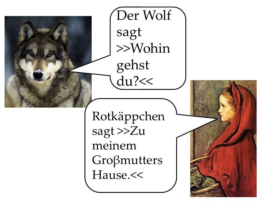 Der Wolf sagt >>Wohin gehst du <<