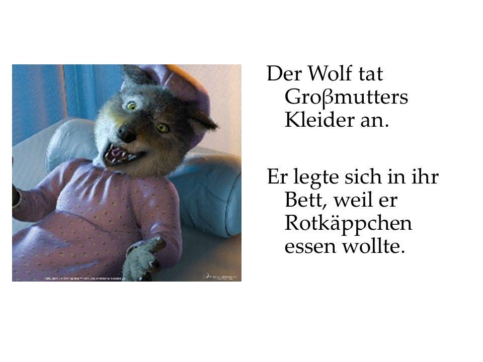 Der Wolf tat Groβmutters Kleider an