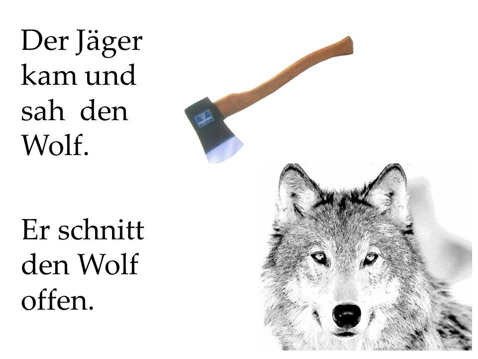 Der Jäger kam und sah den Wolf.