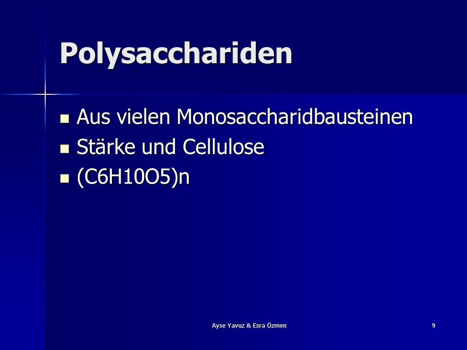 Polysacchariden Aus vielen Monosaccharidbausteinen