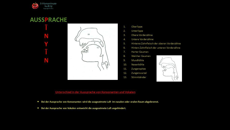 AUSSPRACHE Ī. N. Y. Oberlippe. Unterlippe. Obere Vorderzähne. Untere Vorderzähne. Hinteres Zahnfleisch der oberen Vorderzähne.