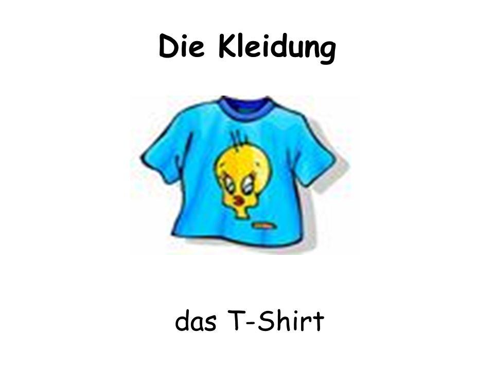 Die Kleidung das T-Shirt