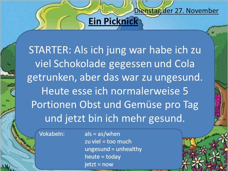 Dienstag der 27. November Ein Picknick.
