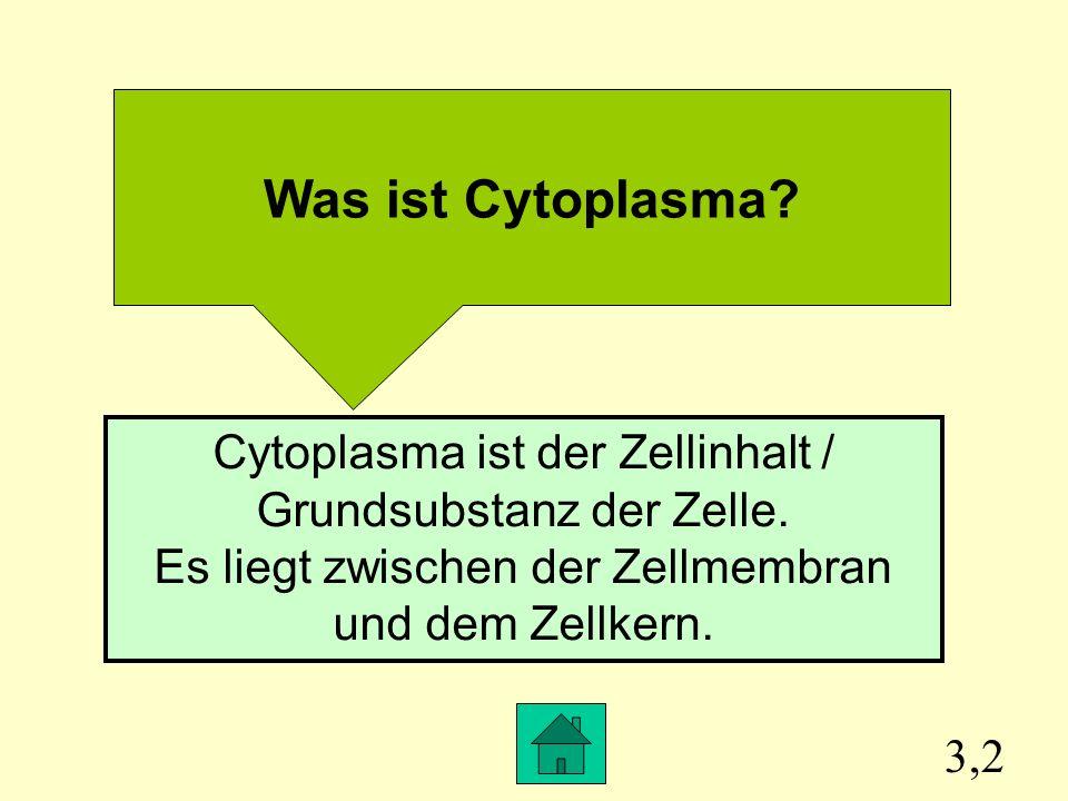 Was ist Cytoplasma Cytoplasma ist der Zellinhalt / Grundsubstanz der Zelle. Es liegt zwischen der Zellmembran und dem Zellkern.