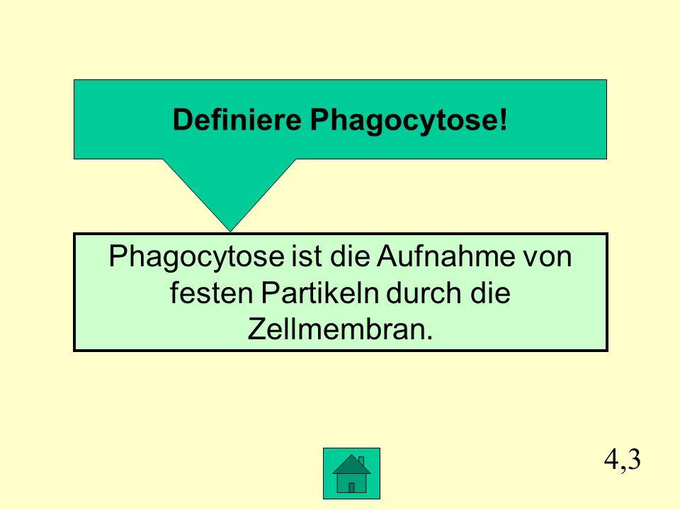 Definiere Phagocytose!