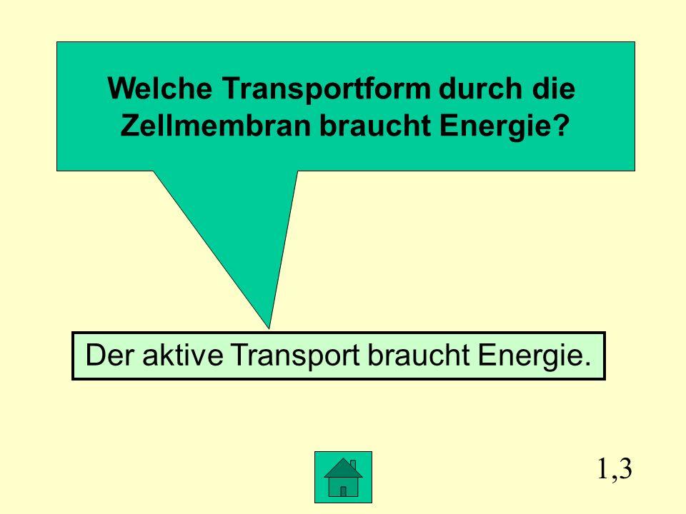 Welche Transportform durch die Zellmembran braucht Energie