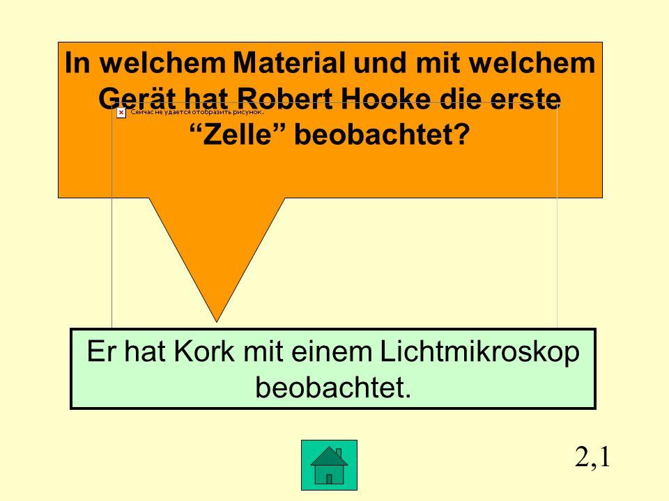In welchem Material und mit welchem Gerät hat Robert Hooke die erste