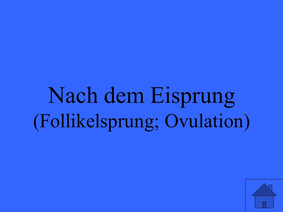 (Follikelsprung; Ovulation)