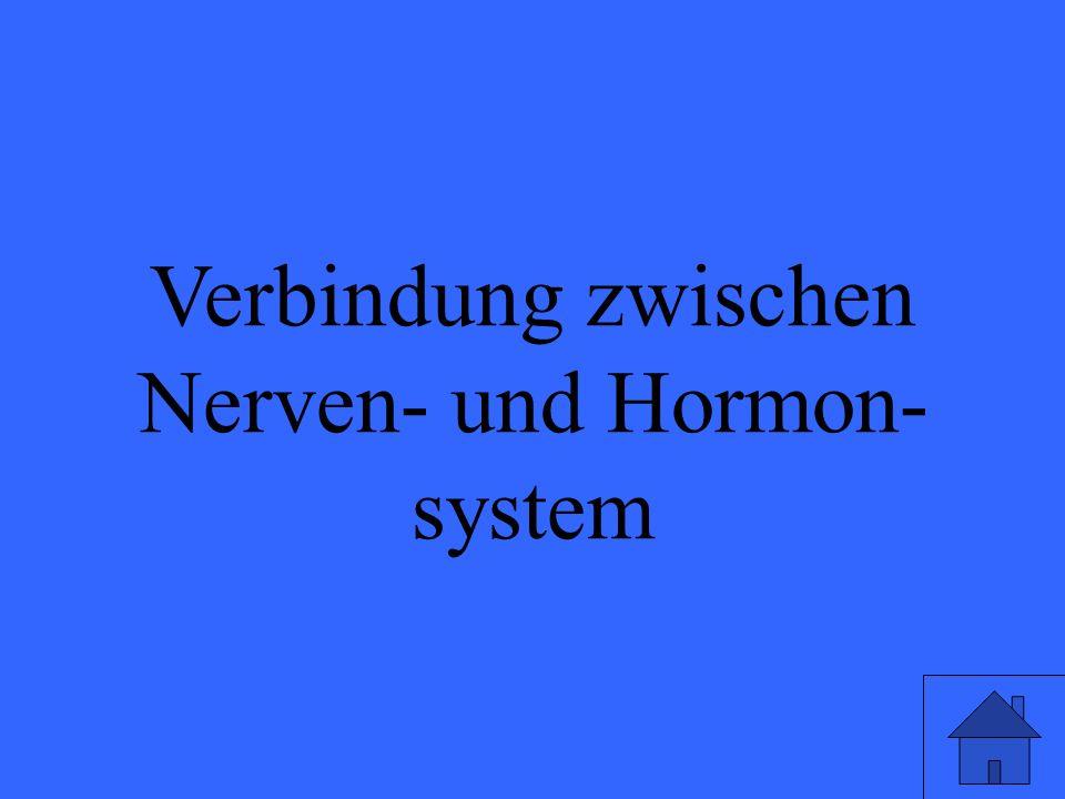 Verbindung zwischen Nerven- und Hormon- system Eleanor M. Savko