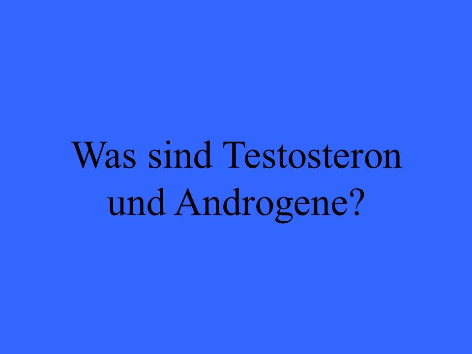 Eleanor M. Savko 01/22/09 Was sind Testosteron und Androgene