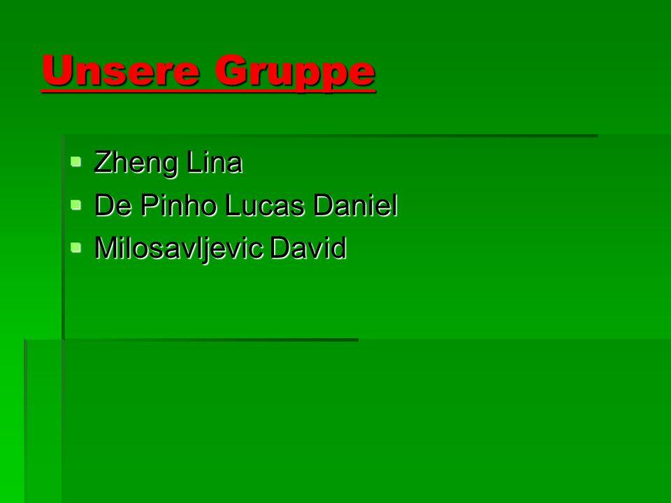 Unsere Gruppe Zheng Lina De Pinho Lucas Daniel Milosavljevic David