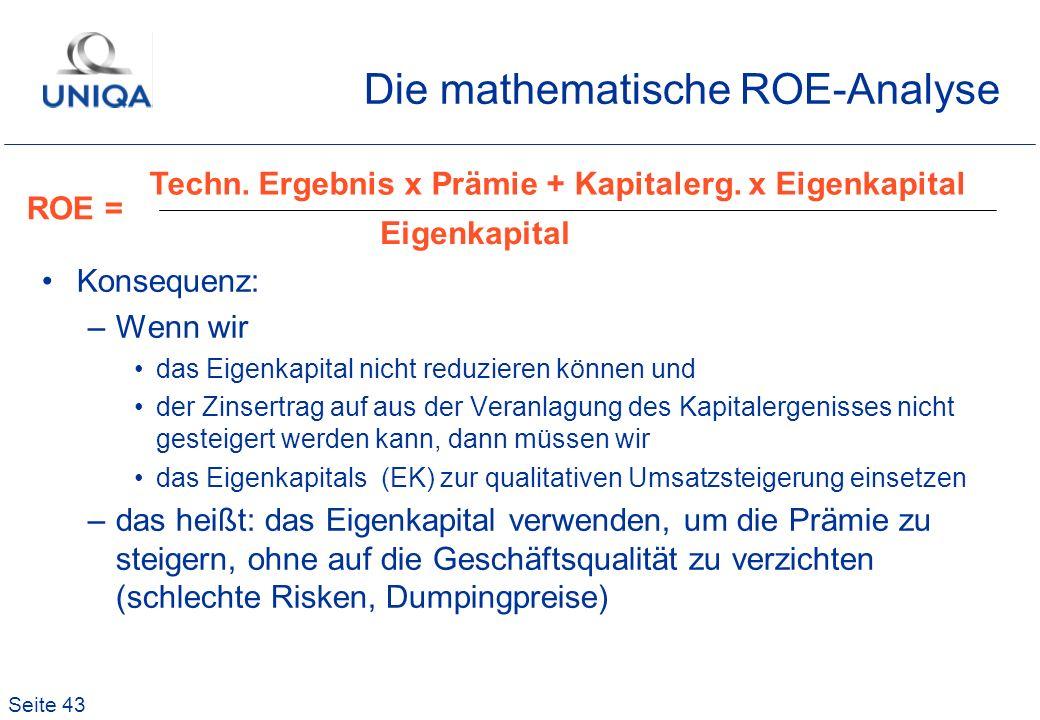 Die mathematische ROE-Analyse