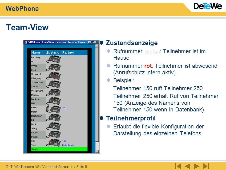 Team-View Zustandsanzeige Teilnehmerprofil