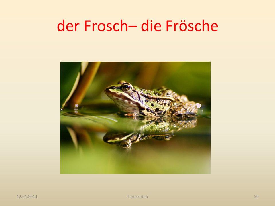 der Frosch– die Frösche