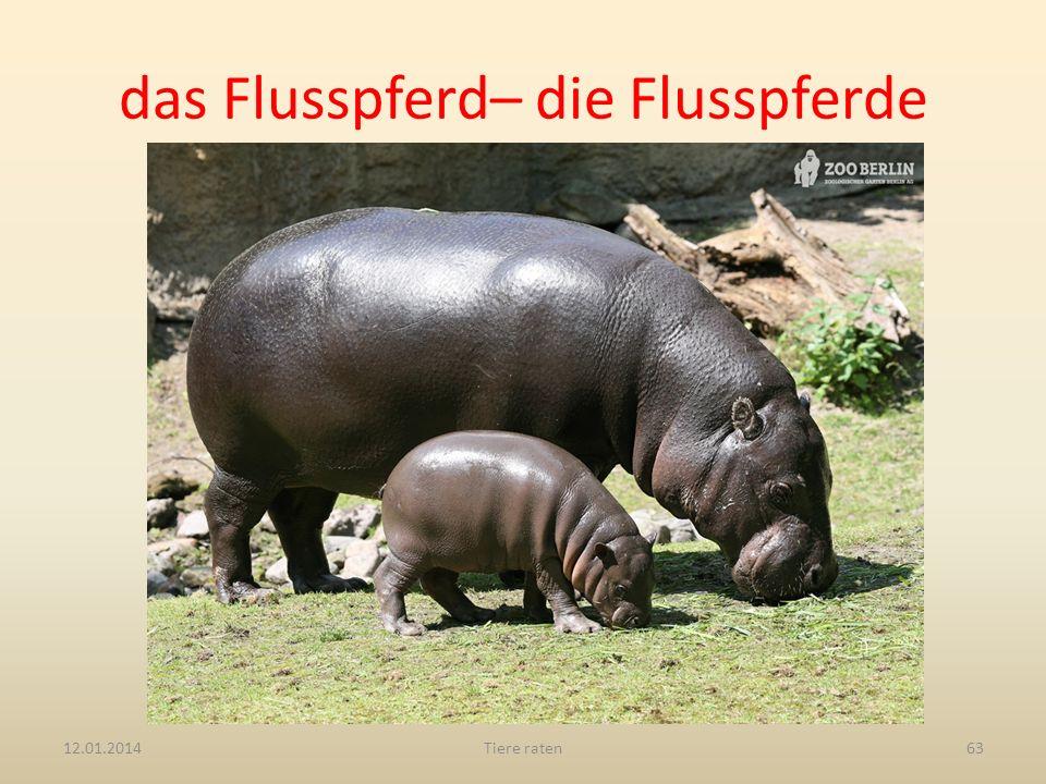 das Flusspferd– die Flusspferde