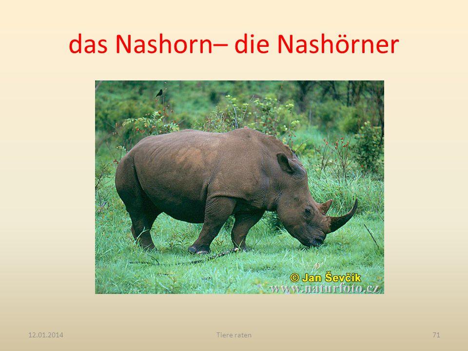 das Nashorn– die Nashörner