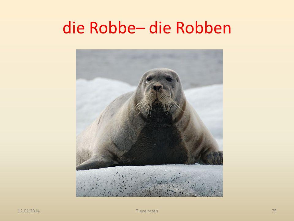 die Robbe– die Robben 27.03.2017 Tiere raten