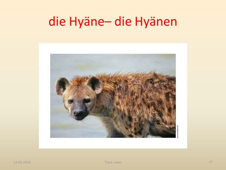 die Hyäne– die Hyänen 27.03.2017 Tiere raten