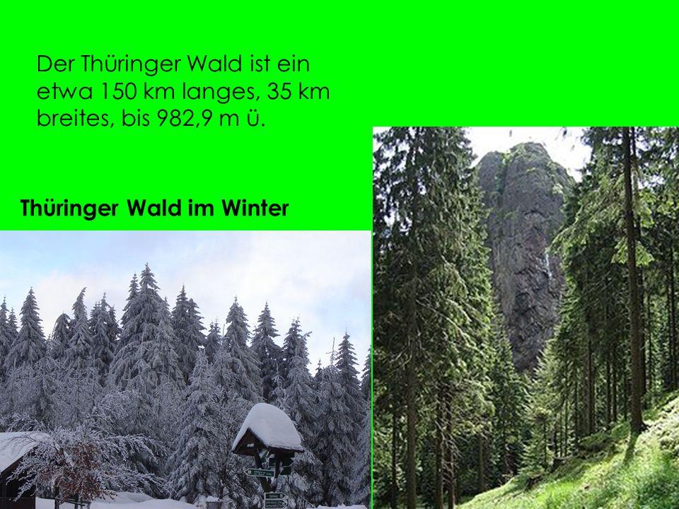 Der Thüringer Wald ist ein etwa 150 km langes, 35 km breites, bis 982,9 m ü.