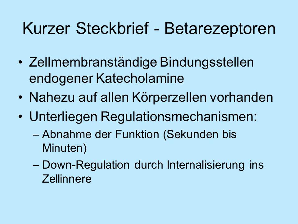Kurzer Steckbrief - Betarezeptoren