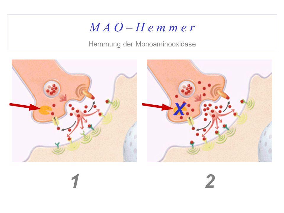 M A O – H e m m e r Hemmung der Monoaminooxidase