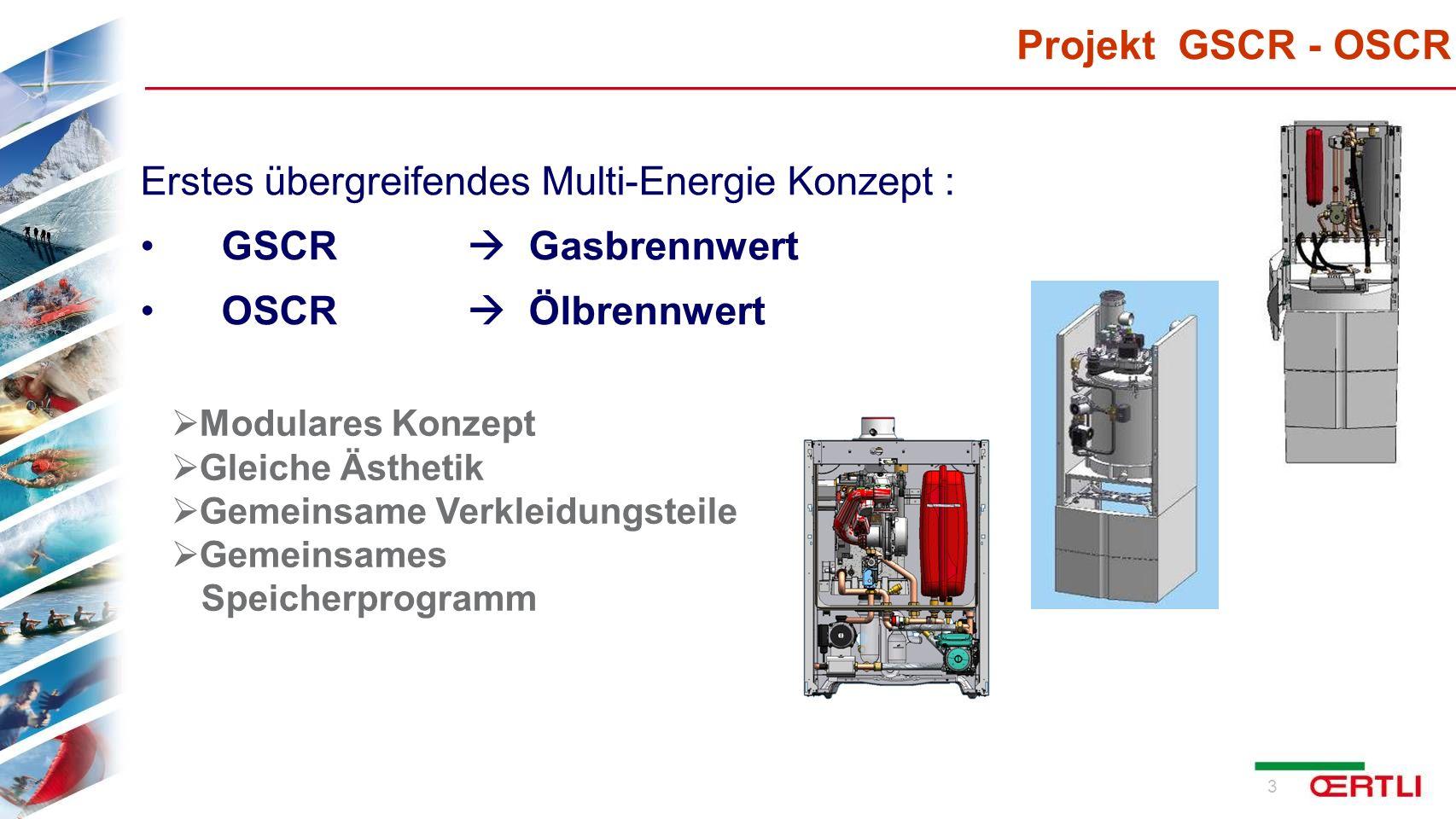 Projekt GSCR - OSCR Erstes übergreifendes Multi-Energie Konzept :