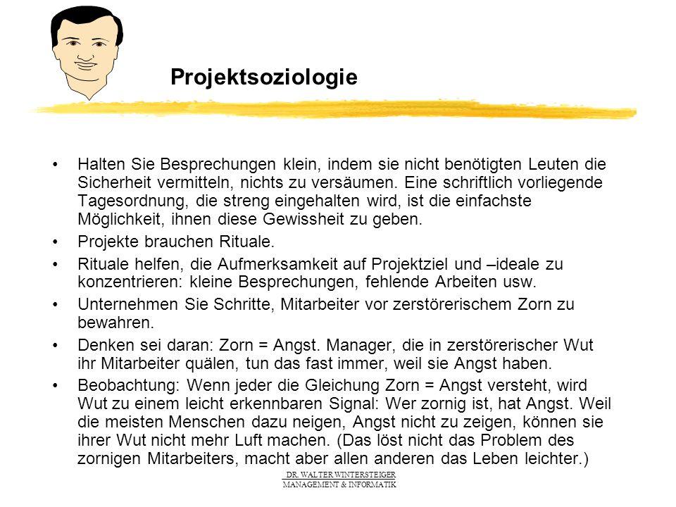 Projektsoziologie