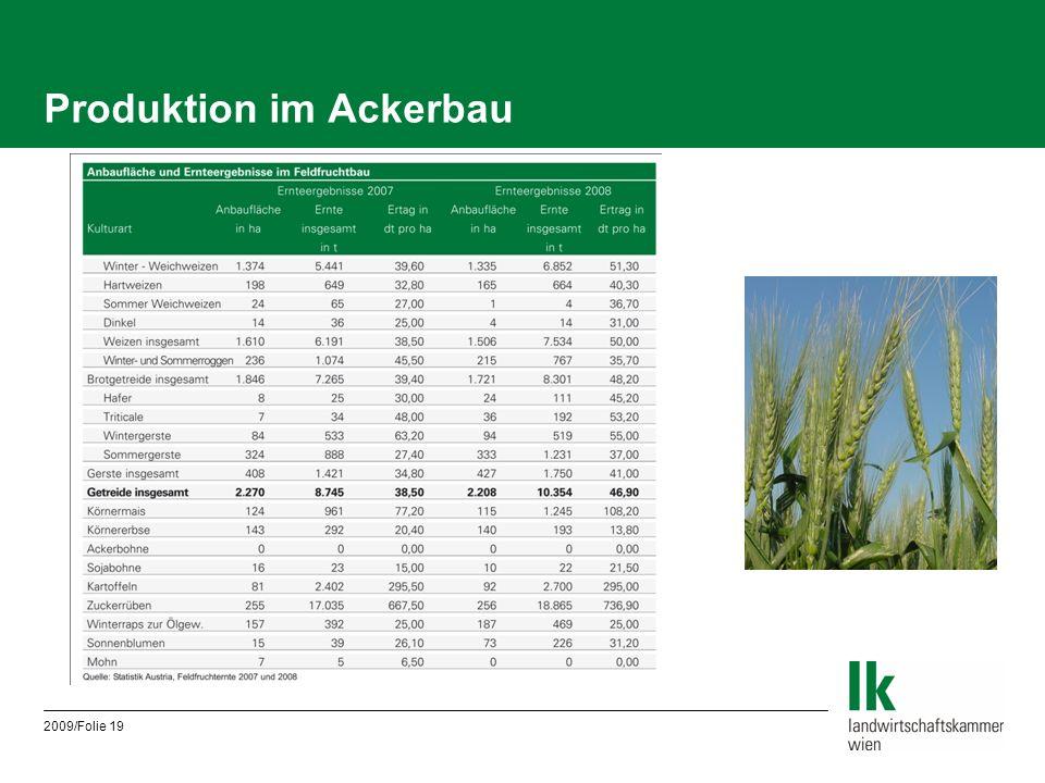 Produktion im Ackerbau