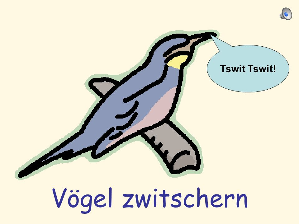 Tswit Tswit! Vögel zwitschern