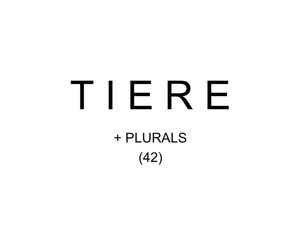 T I E R E + PLURALS (42)