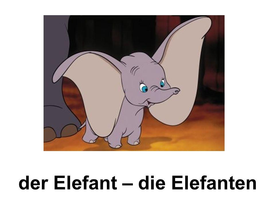 der Elefant – die Elefanten