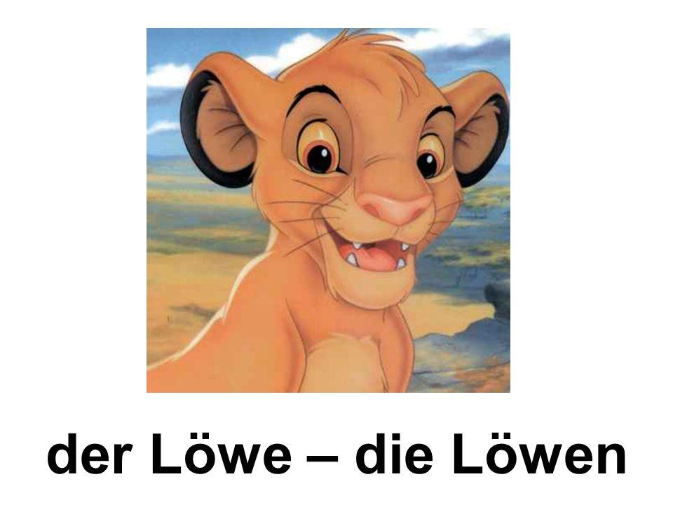 der Löwe – die Löwen
