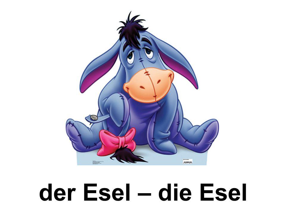 der Esel – die Esel