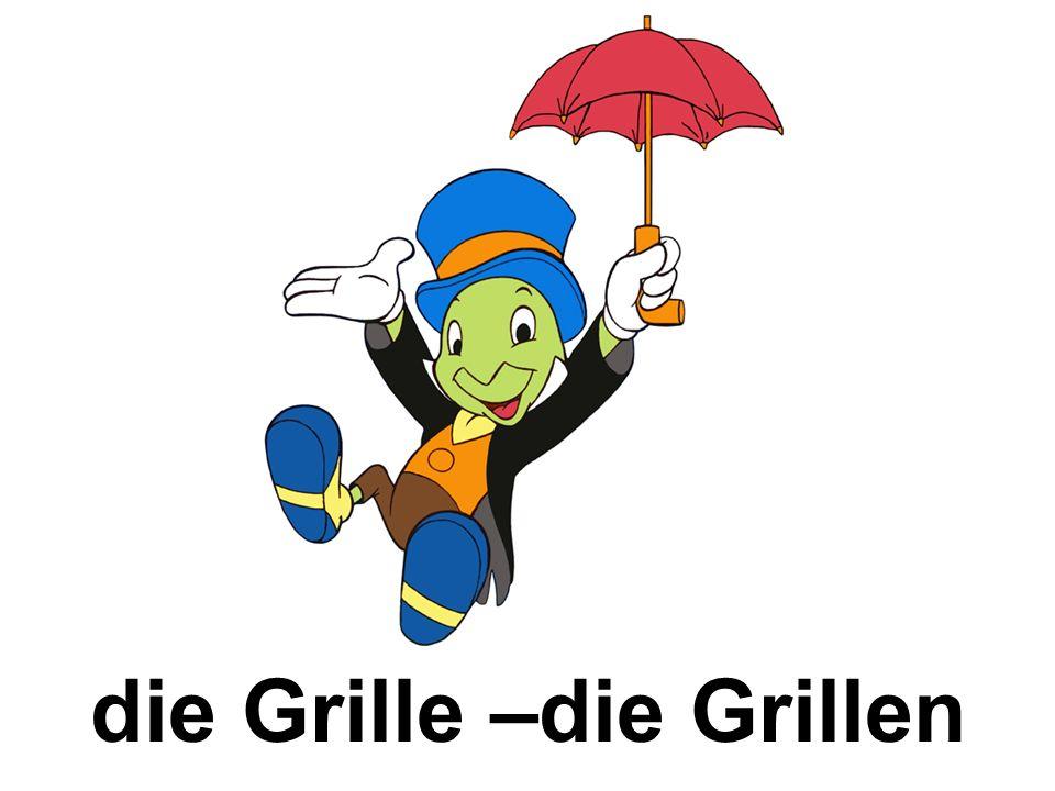 die Grille –die Grillen