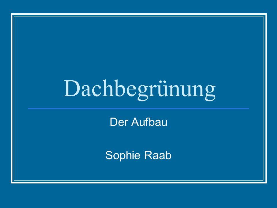 Dachbegrünung Der Aufbau Sophie Raab