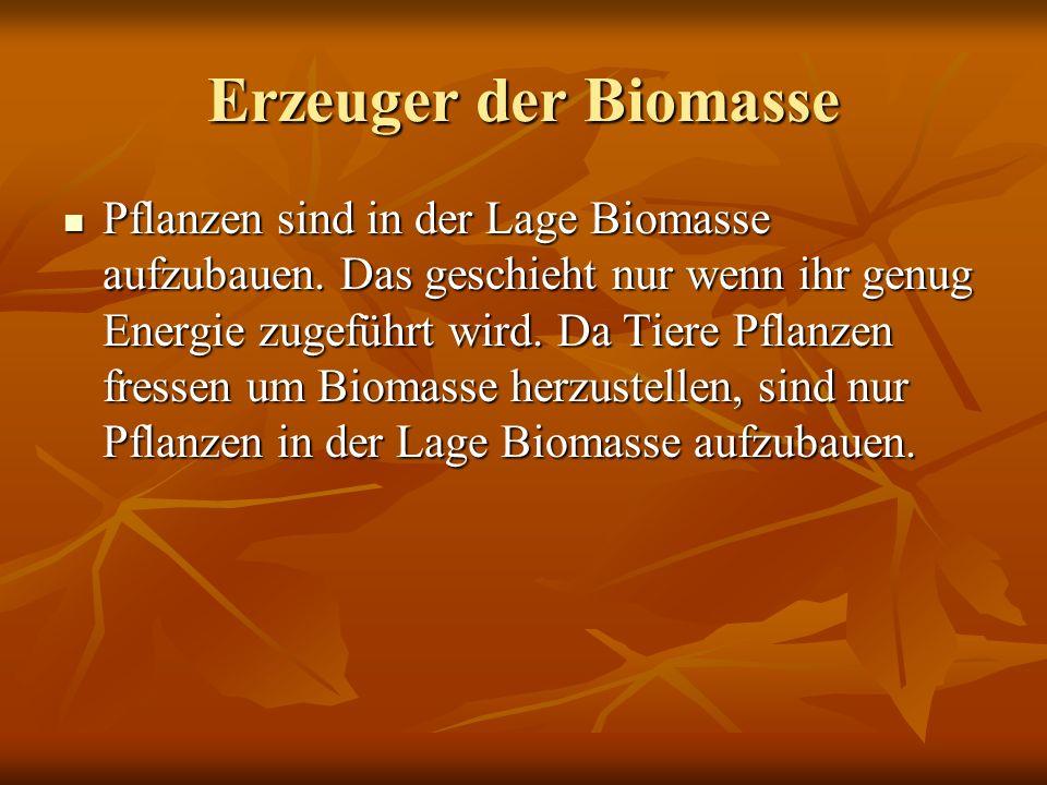 Erzeuger der Biomasse