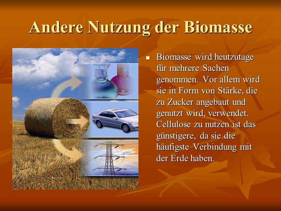 Andere Nutzung der Biomasse