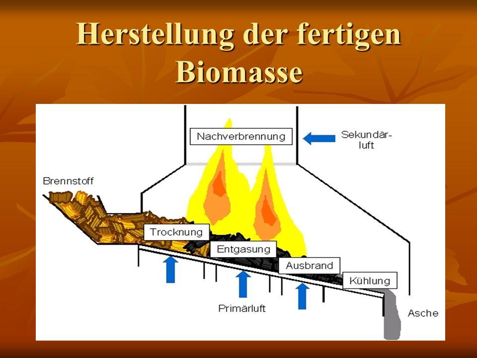 Herstellung der fertigen Biomasse