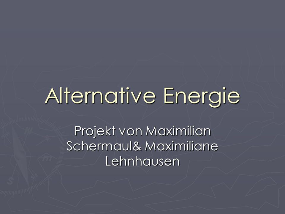 Projekt von Maximilian Schermaul& Maximiliane Lehnhausen