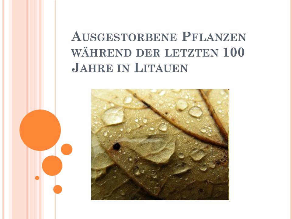 Ausgestorbene Pflanzen während der letzten 100 Jahre in Litauen
