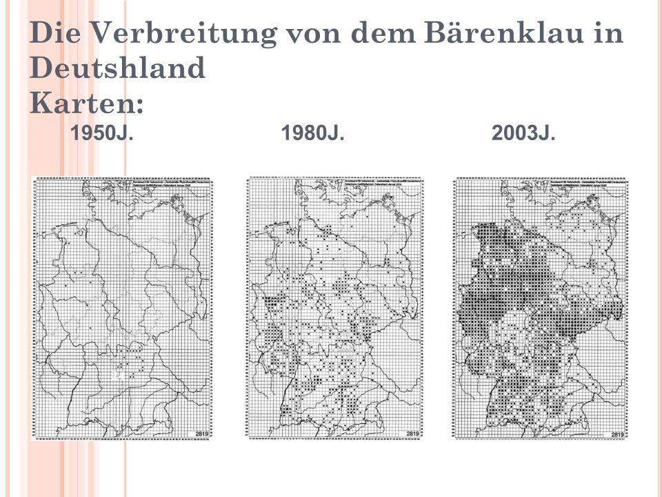 Die Verbreitung von dem Bärenklau in Deutshland Karten: 1950J. 1980J