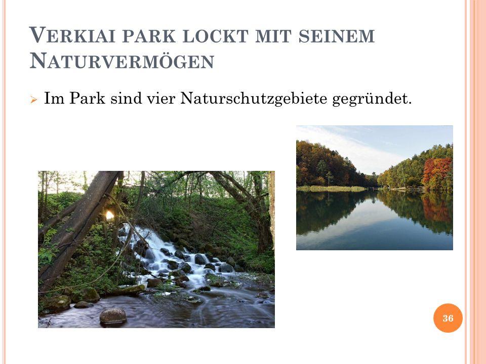 Verkiai park lockt mit seinem Naturvermögen
