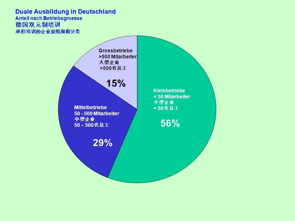 29% Duale Ausbildung in Deutschland 德国双元制培训