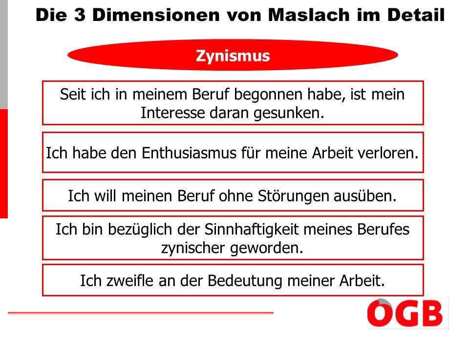 Die 3 Dimensionen von Maslach im Detail