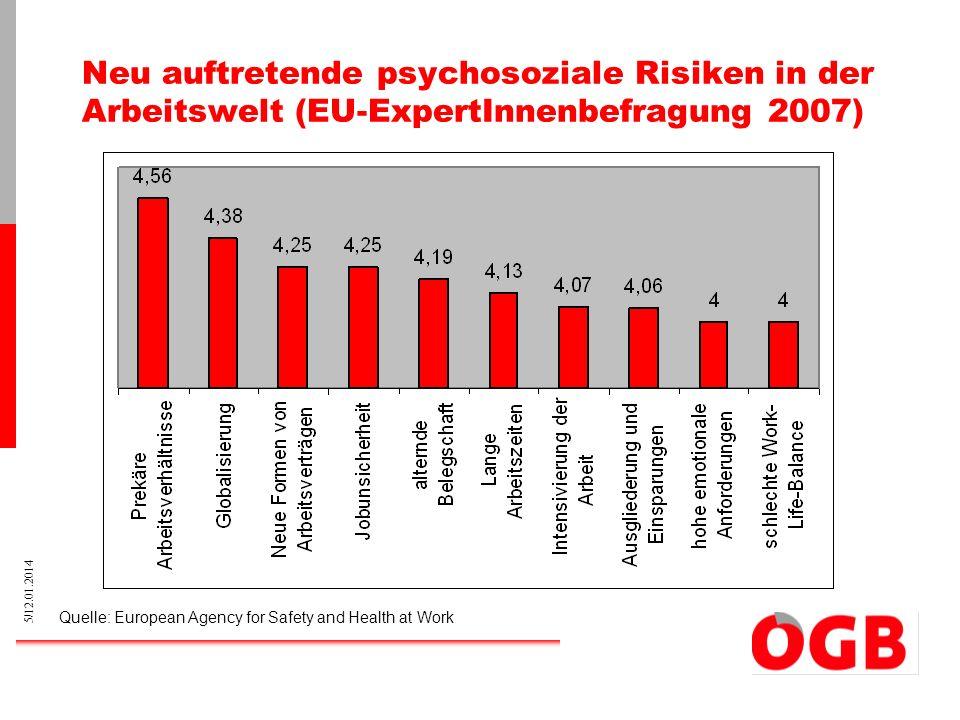 Neu auftretende psychosoziale Risiken in der Arbeitswelt (EU-ExpertInnenbefragung 2007)