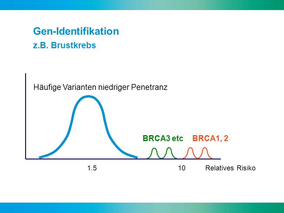 Gen-Identifikation z.B. Brustkrebs