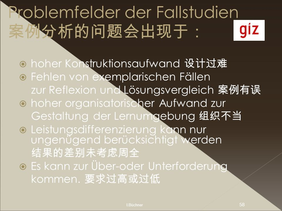 Problemfelder der Fallstudien 案例分析的问题会出现于: